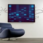 DNS ajándékok