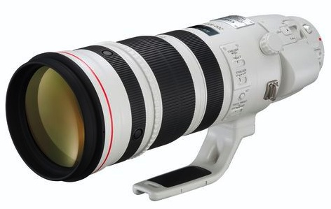 Canon EF 200-400/4L IS USM teleconverter 1.4x