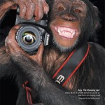 Fotózni egy majom is tud
