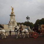 Hogyan fényképezik a hercegi pár esküvőjét a hírügynökségek?