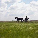Pályi Zsófia/Origo bemutatja az ország utolsó lovas postását