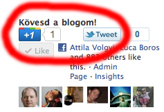 Google+1-Twitter-Like-followMyBlog