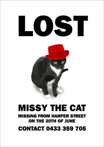 08MissyTheMissingCat