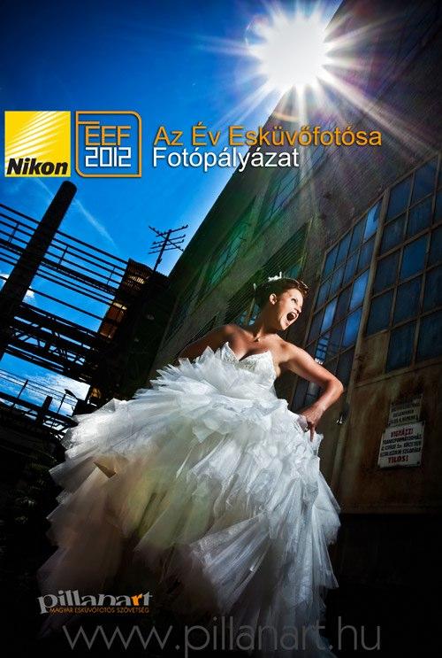 NIKON-az-ev-eskuvofotosa-2012-plakat-web