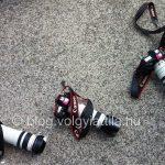 Instakép: Hungaroring, célegyenes, sorbanállás