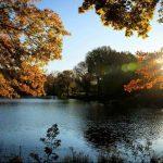 Évszakok változása a Central Parkban