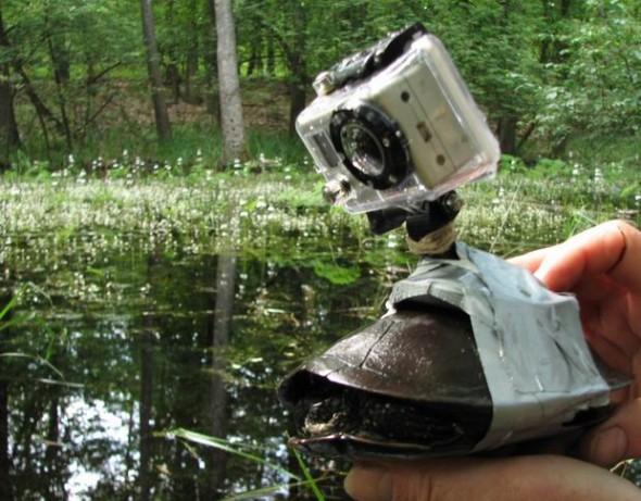 Török Zoltán rendező, a teknős és a GoPro kamera