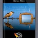 Máté Bence iPadre készült albuma igazán környezetbarát