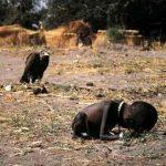 Kevin Carter nem a keselyű miatt lett öngyilkos