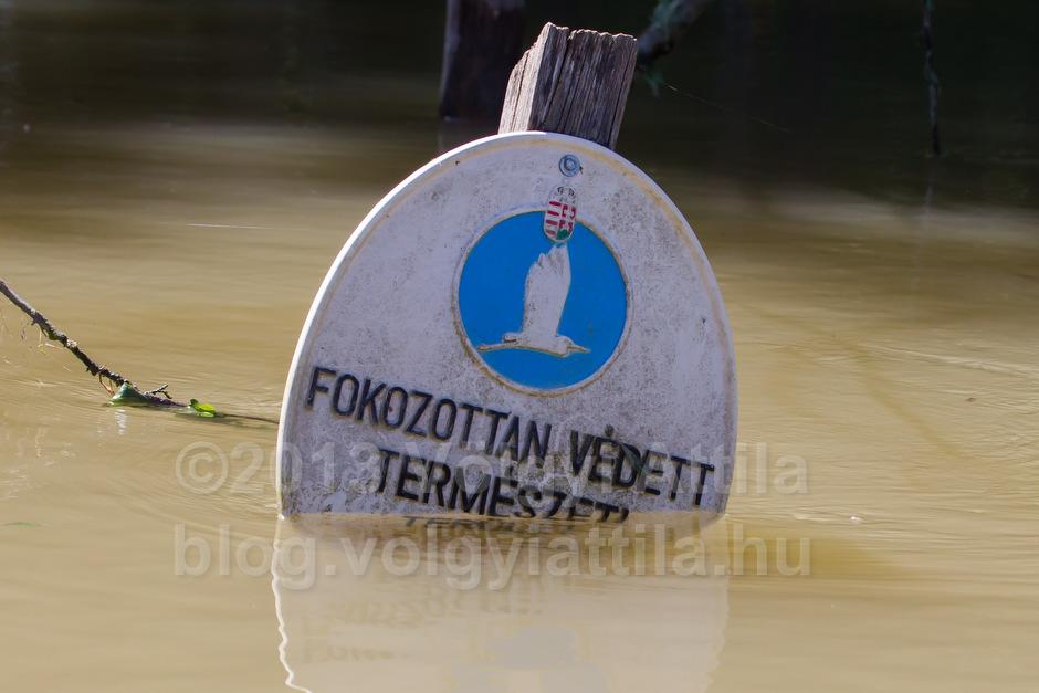 Flooding in Gemenc