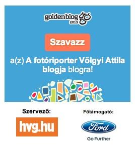 Goldenblog2013-widget