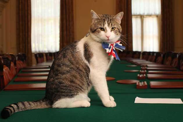 Fotó: brit kormány