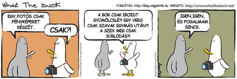 Forrás: What The Duck