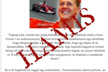 Schumacher-article-markedFake