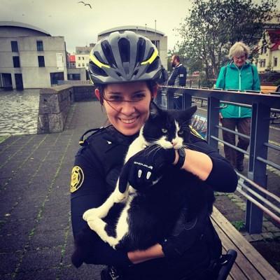 Macskával pózoló izlandi rendőrnő az InstagramonFotó: Reykjavik Metropolitan Police