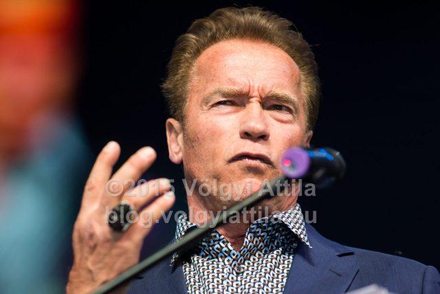 Arnold épp azon mereng...Fotó: Völgyi Attila / blog.volgyiattila.hu