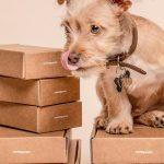 Csomag átvételi tippek termék rendeléshez