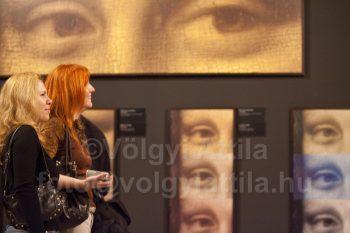 http://attilavolgyi.photoshelter.com/gallery-image/Da-Vinci-Exhibition/G0000yqs7GSDDBMk/I0000wuwUm8sI288/C0000neFeaqk30sg
