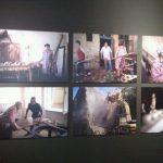 Múzeumi kiállítások a Föld Napja alkalmából