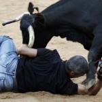 Amikor a fotós túl közel van….a bikához