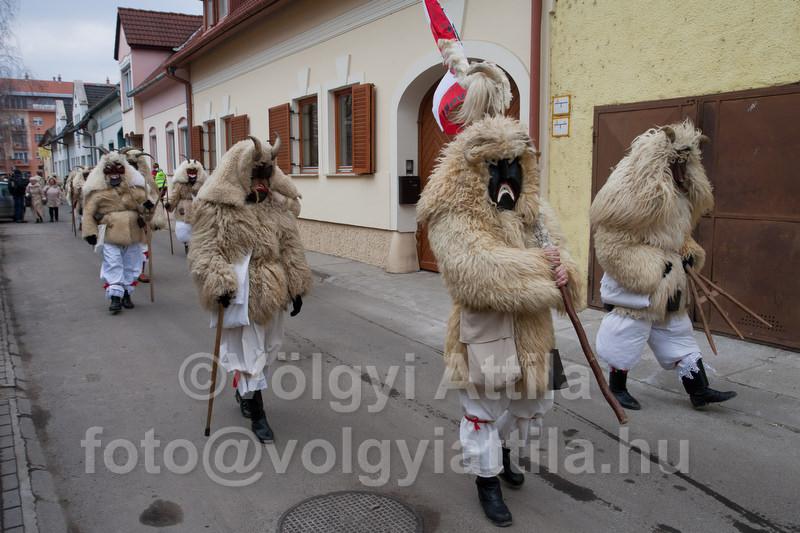 http://attilavolgyi.photoshelter.com/gallery/Busojaras-2011-Winter-farewell-in-Mohacs/G0000jY1IjmyWbRE/C00008U2e5rzJr7k