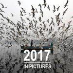 Válogatás gyűjtemény 2017 legjobb fotóiból