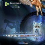 Ismerd meg a magyar természetfotósok krémjét!