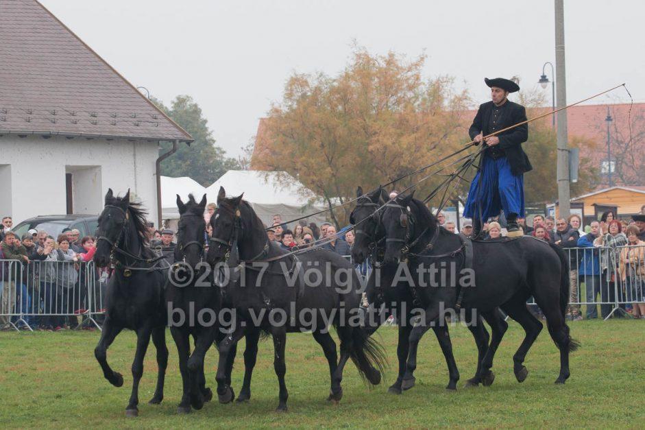 http://attilavolgyi.photoshelter.com/gallery/Grazing-season-ends-in-Hortobagy-2017/G0000eI082qGfYJ0/C0000lX1yjX4TaF8